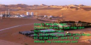 visa algeria