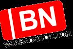 logo bao ngoc