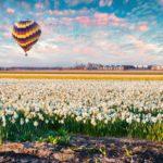 Visa Hà Lan du học năm 2018 có gì mới?