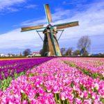 Cách xin visa Hà Lan Thăm Thân