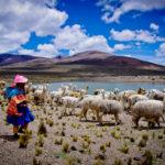 NHỮNG LƯU Ý CẦN BIẾT KHI DU LỊCH PERU (PHẦN 1)