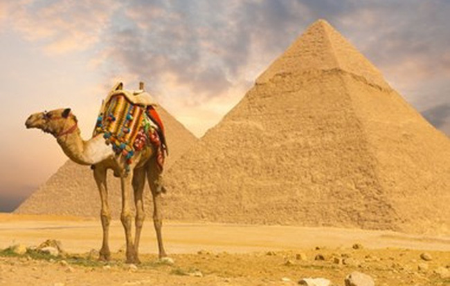 Những lưu ý khi xin visa Ai Cập